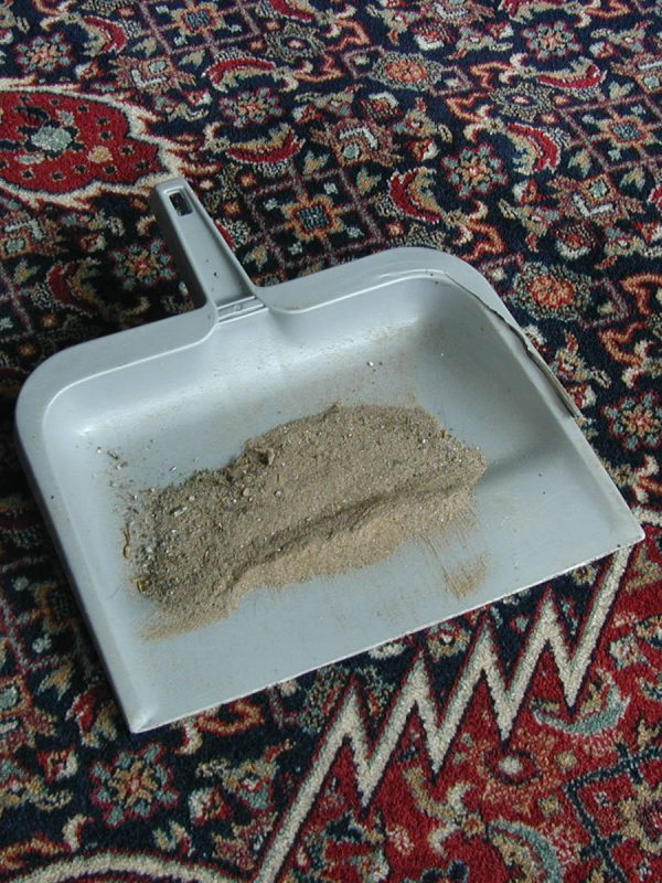Cleveland Carpet Cleaning
