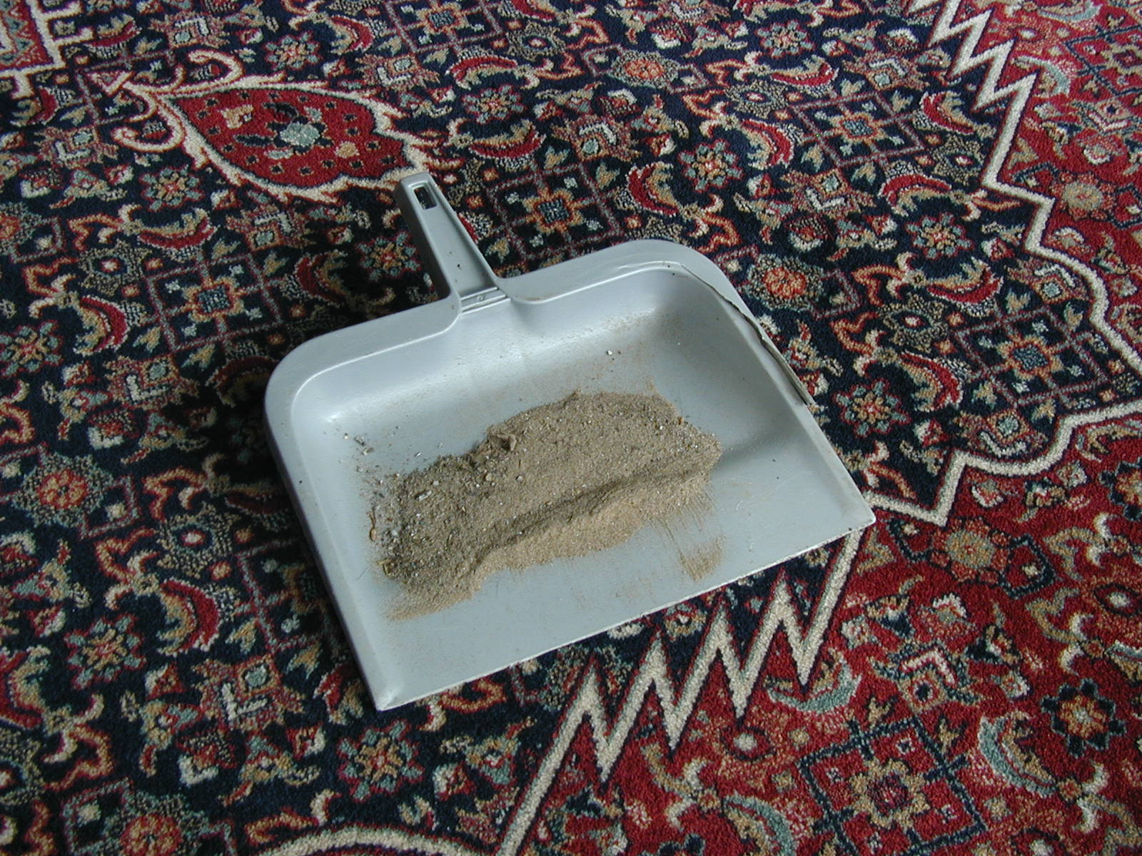 Rug Cleaning Cleveland